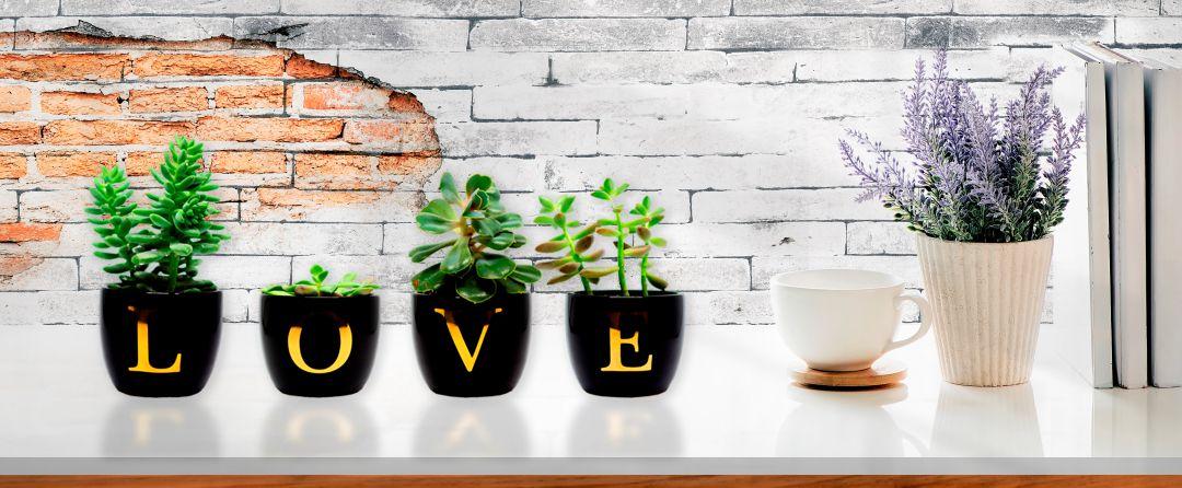 Vasos de Letras