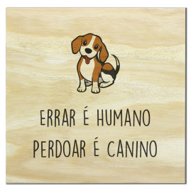 Imã de madeira perdoar é canino